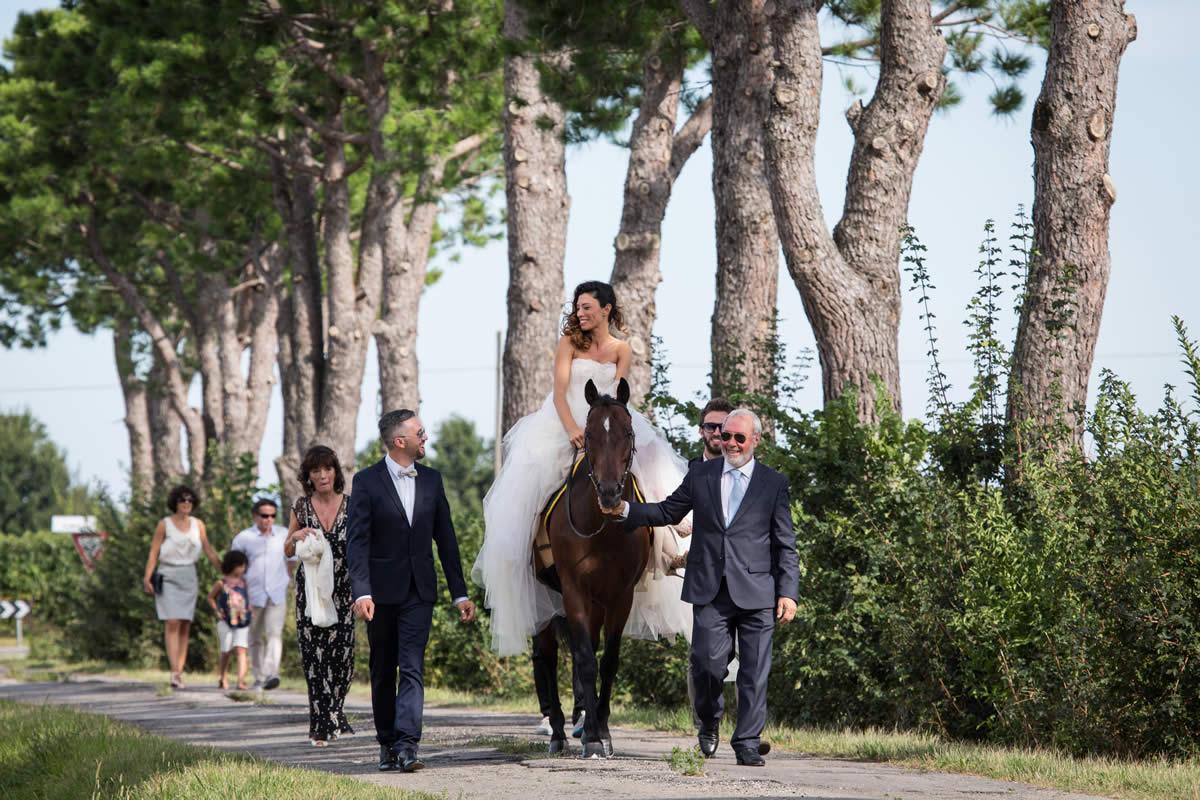 cavallo-sposa-trere-faenza-agriturismo
